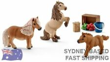 Pony Figurines Collectables