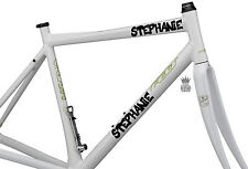 2 x Personalised Bike Name Stickers Vinyl Decals Wavey Font Bicycle BMX