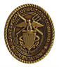 Vanguard USNSCC - BADGE JOINT SPEC OPS CMD ANTIQUE GOLD