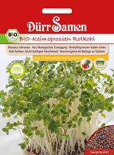 4406 Dürr BIO Keimsprossen Rotkohl ca.25g fein herber kohliger Geschmack Samen