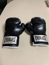 Everlast 12oz Boxing Gloves >>> L@K