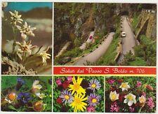SALUTI DAL PASSO S.BOLDO - VEDUTINA - CISON DI VALMARINO (TREVISO)