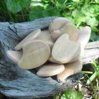 30 perles Perles Bois irrégulière 28 x 21x 4,5  mm
