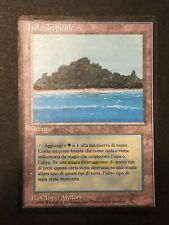 1 x Tropical Island Foreign Black Bordered Magic the Gathering