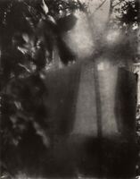 1954/80 Original Josef Sudek Silver Gelatin Photograph Surreal Garden Art Czech
