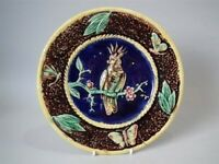 Majolica Parrot & Butterfly plate