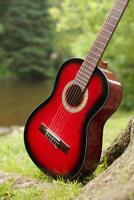 Red Acoustic Guitar Leaned Against A Tree Photo Art Print Poster 24x36 inch