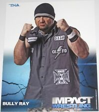 TNA BULLY RAY P-9 IMPACT WRESTLING 8X10 PROMO PHOTO