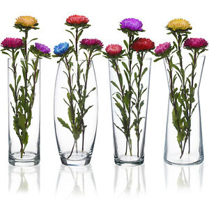 Tall Glass Flower Vase Pot Home Wedding Decoration Table Centerpiece Plant Vases