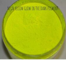 USA Glow in the Dark Pigment Powder Acrylic Gel Nail Art | Glow Nails Custom Mix