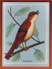 Image Educative Cartonnée - Chromo - Le Rossignol - Oiseau-Bird - Faune - Réf.82