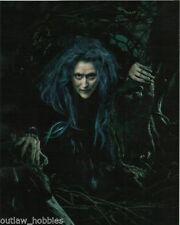 Meryl Streep Autographed Signed 8x10 Photo COA #2