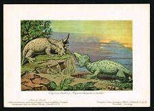 Hyperodapedon & Elginia Dinosaurs Prehistoric Reptiles, Tiere der Urwelt 1900