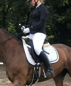 Pikeur Turnierjacket Shannon Gr. L in schwarz 2x getragen Turnier Bekleidung