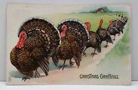 Tuck Oilette Christmas Greetings Line Of Turkeys  Embossed c1910 Postcard F20