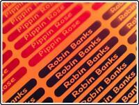 100 Personalised mini Name Stickers - Labels - Decals - Waterproof