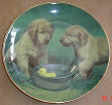 Lovely Franklin Mint DUCK HUNTERS Golden Retriever 8 Inch Plate