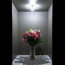 Bonlux 4W E14 Cookerhood Refrigerator LED Light Bulbs SES Kitchen Lighting