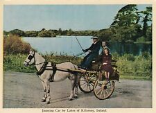IRELAND UNUSED POSTCARD.JAUNTING CAR KILLARNEY CO KERRY,