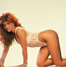 TAWNY KITAEN (Snake) POSTER 24 X 36 Inches Looks beautiful white snake