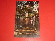 AF749 Vintage Postcard Pat O'Briens Peter Street New Orleans Louisiana