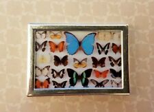 BUTTERFLIES display 1:12th scale dolls house ornament picture painting victorian