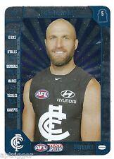 2015 Teamcoach SILVER (59) Chris JUDD Carlton