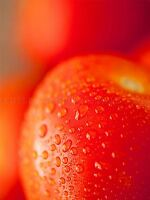 TOMATO WATER DROPLETS RED FOOD KITCHEN ART PRINT POSTER PICTURE BMP158A