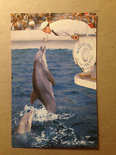 POSTCARD - ZIPPY THE PORPOISE - MARINELAND OF THE PACIFIC  1960's  (2821)