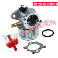 Carburateur Kit Joint pour Moteur Briggs & Stratton 799868 498254 497347 497314