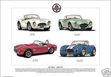 Ac Cobra The Auto sportiva 1962-69 Stampa artistica - 260 289 427 Mk3 illustrato