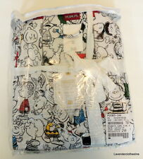 Pottery Barn Teen Peanuts Flannel Pajamas Pants Top Charlie Brown Size S Juniors
