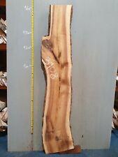 Waney Edge Live Edge Walnut Slab Board Kiln Dried Hardwood 1570 x 200-330 x 50mm