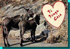 CPSM - TI TENGU CARA ( je t'aime ) Ane