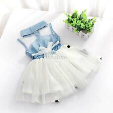 Infant Baby Girls Princess Party Tutu Lace Flower Tulle Dresses Clothes 2-7Y