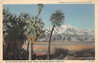 Vintage Mt. San Jacinto Two Bunch Palms Near Palm Springs  Linen Postcard 1945