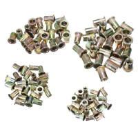 100Pcs Rivet Nut Mixed Zinc Steel Rivnut Insert Nutsert Threaded Case Set