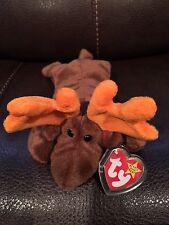 'Chocolate' the Ty Moose Original 1993 Beanie Baby  Rare NEW