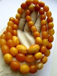A single-row baltic amber beads genuine necklace butterscotch