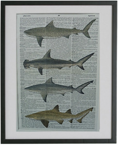 Shark Print No.225, nautical poster, nautical wall decor
