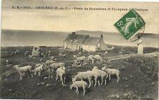 CPA GRIS NEZ-Poste deDouaniers et Troupeau (180867)