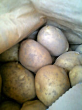 Maris Piper Potatoes from Cornwall  delivered to your door.