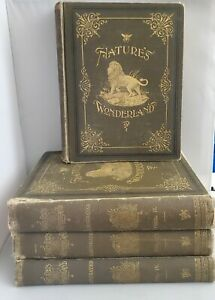 1894 ANTIQUE NATURE'S WONDERLAND, VOL. 1-4 VICTORIAN ANIMALS PEOPLE ILLUSTRATED