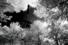 Tour Eiffel : David Noton - Maxi Poster 91.5cm x 61m (new & sealed)