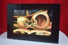 """Sony DPF-C70A 7"""" Inch Digital Photo Frame (Ref 029)"""