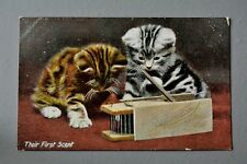 R&L Postcard: Their First Scent Cats Kittens Tabby Mousetrap, JWB