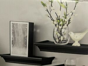 4 Decorative Black Molded Plastic Contemporary Wood Floating Shelves Set