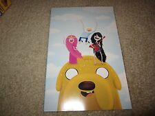 RARE ADVENTURE TIME WITH FINN & JAKE #15 COOL VARIANT!!!