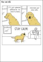 Dog Barking Funny They Can Talk Greeting Card Birthday Or Any Occasion