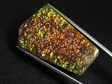 Ammolit / Ammolite 62,86 Ct. bunter Cabochon 46 mm (986w)
